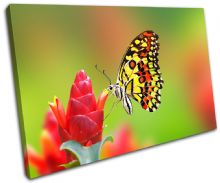 Butterfly Flowers Animals - 13-1554(00B)-SG32-LO